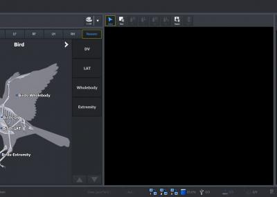 Schermata Uccello-Bird